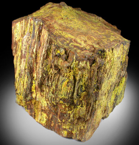 Photographs Of Mineral No 39423 Uranophane On Petrified